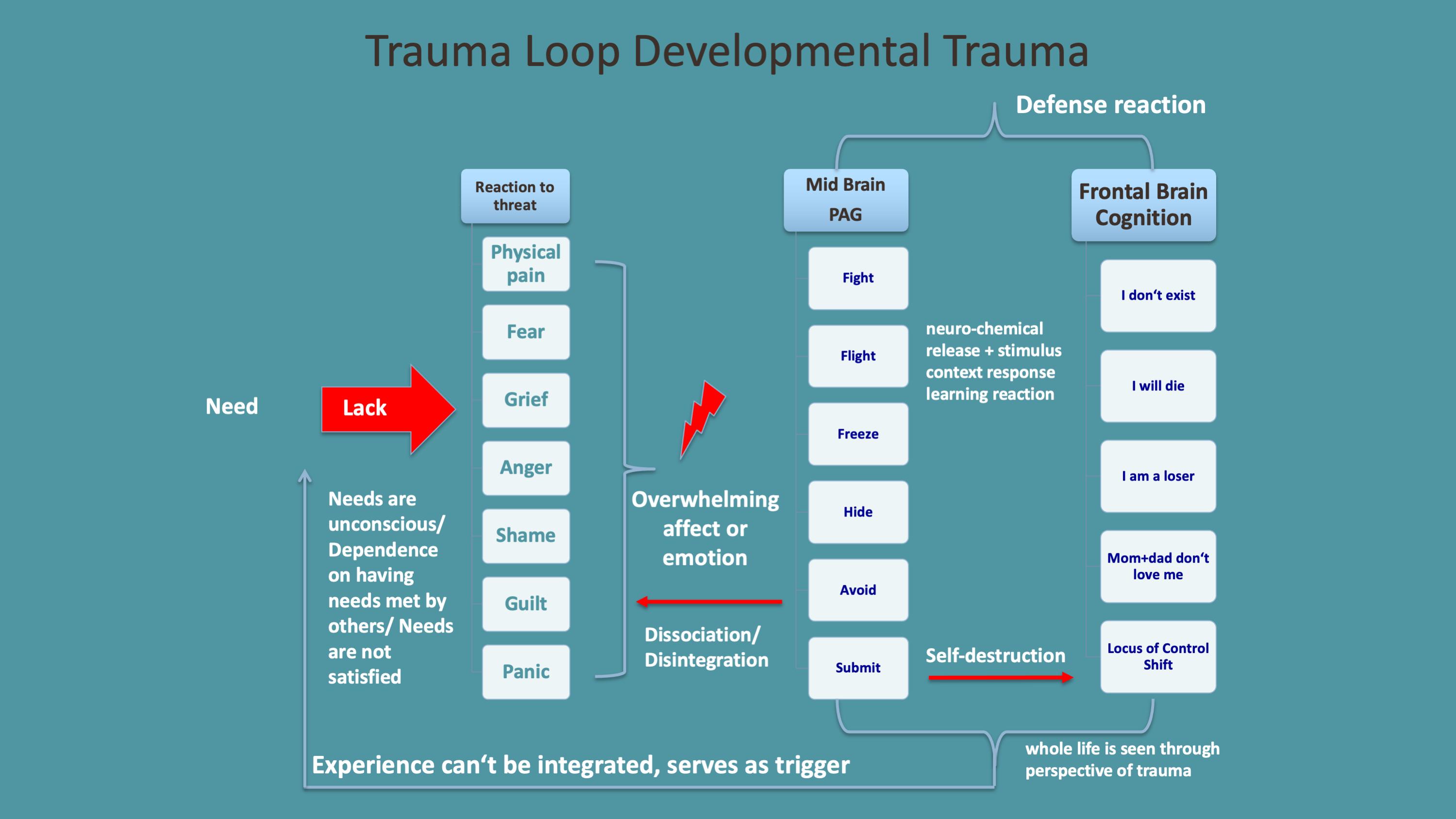 Developmental Trauma Loop